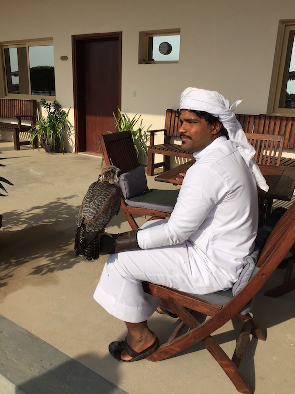 20 Reasons Why Anantara Sir Bani Yas Island is a Fab Family Staycation