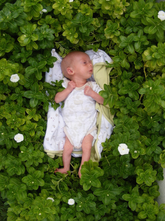 Premature baby photo shoot