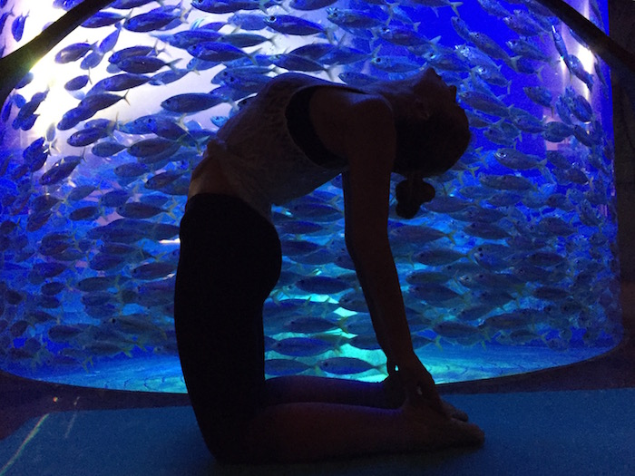 Underwater Yoga at Atlantis