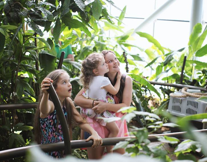 indoor fun at the green planet